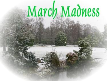 Marchmadness_2