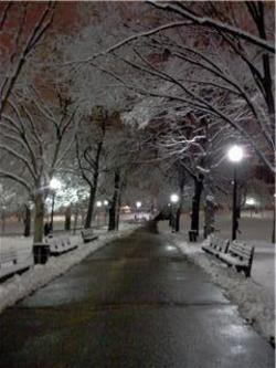 Boston_common_snow_2
